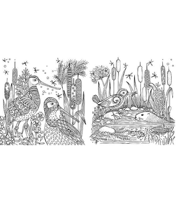Раскраска Mein Frühlingsspaziergang: Ausmalen und durchatmen от Rita Berman (изд. Lübbe Германия)