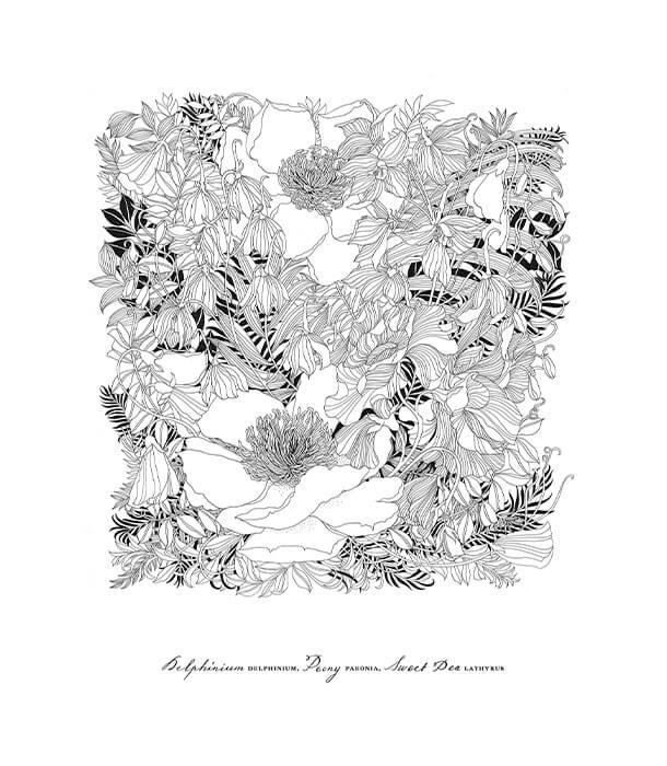 Раскраска Floribunda: A Flower Colouring Book от Leila Duly (изд. 二見書房 Япония)